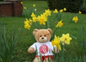 April: Ramada Telford Ironbridge welcomes a new recruit…but we need your help!?